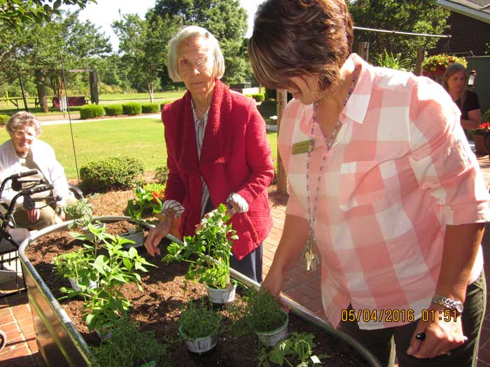 Retirement community residents plant a vegetable garden photo gallery.